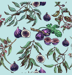 Hand drawn fig and eucalyptus pattern card vector