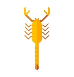 Scorpion yellow silhouette insect animal vector image