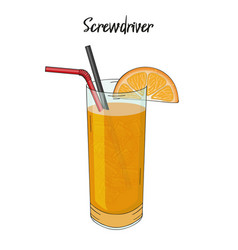 Screwdriver cocktail with orange decorations vector