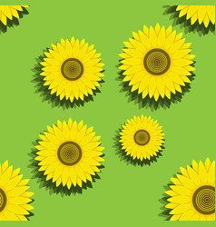 seamless pattern sunflower on green summer vector image