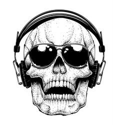 Skull in sunglasses vector