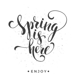Sping is here Lettering design vector