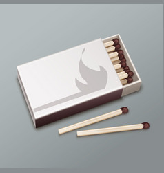 box of matches vector image vector image