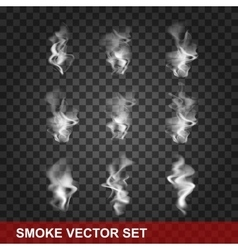 Set of transparent smoke on a plaid background vector image