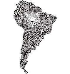 Camouflage Jaguar on the map of South America vector