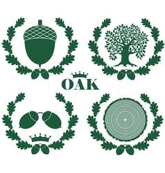 Oak vector