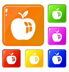 ripe apple icons set color vector image