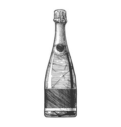 sparkling wine bottle vector image