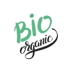 bio organic hand written inscription on green vector image