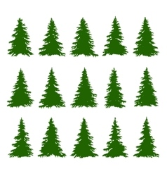 Conifer Trees Set on the white background for vector image