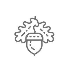 Acorn oak line icon vector