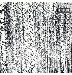 Birch forest texture vector