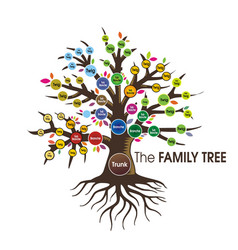 family tree human tree vector image