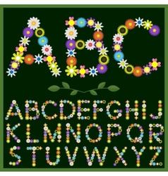 Flowers alphabet vector image