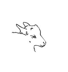 Goatling head sketch hand drawn vector