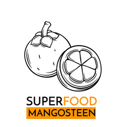 icon superfood mangosteen vector image