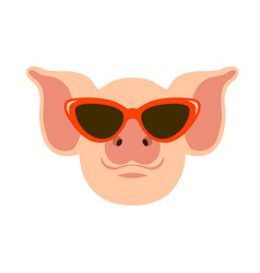 pig in glasses face flat vector image