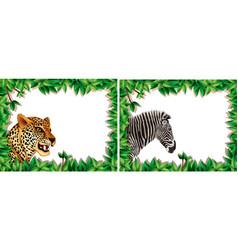 zebra and leopard on nature frame vector image
