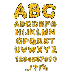 Fire ABC Flame Alphabet Fiery letters Burning font vector image vector image