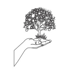 grayscale contour with leafy tree over hand vector image vector image