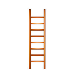 ladder in wooden design vector image vector image