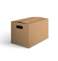 Package Box vector image vector image