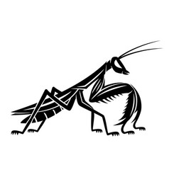 Black mantis insect vector