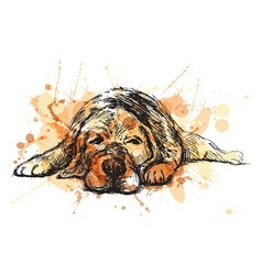 Colored hand sketch lying dog vector