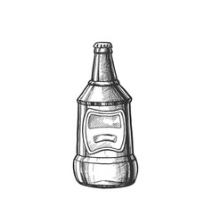 hand drawn blank closed bottle of beer vector image