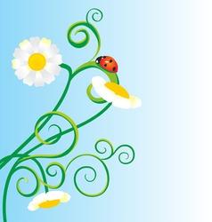 ladybug chamomile vector image
