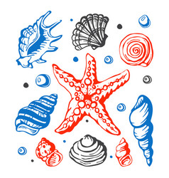 Sea marine shells hand drawn sketch vector