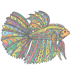 zentangle doodle betta fish - colorful version of vector image vector image