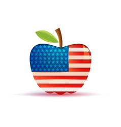 the USA flag in a big apple vector image vector image