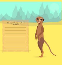African meerkat vector