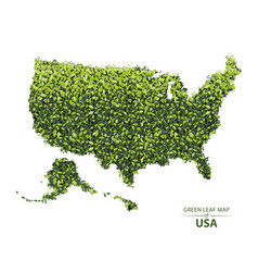 green leaf map of usa vector image