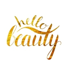 Handwritten calligraphic inscription Hello beauty vector