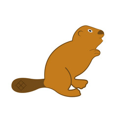 Isolated beaver icon vector