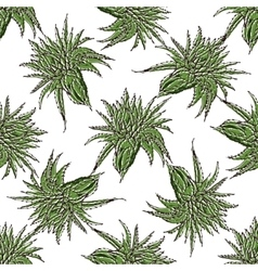 seamless pattern with green Aloe Vera vector image