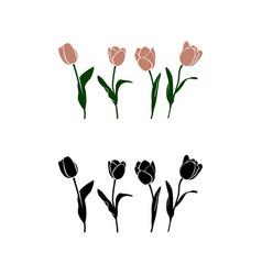 simpleline art tulp vector image