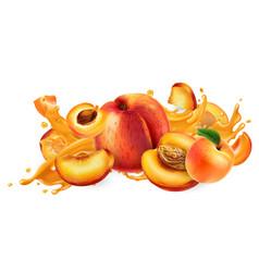 Splash fruit juice and fresh peaches vector