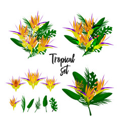 tropical floral collage vector image