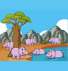 many hippos in the field by the pond vector image