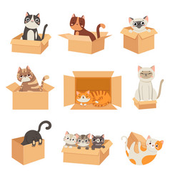 cats in boxes cute stickers with cat sitting vector image