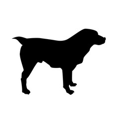 Central asian sheep dog silhouette vector