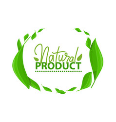 frame green leaves natural product lettering vector image
