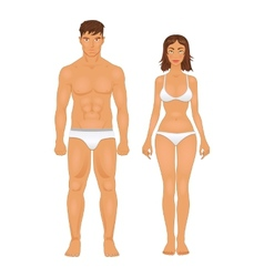 Healthy body type of man and woman in retro colors vector