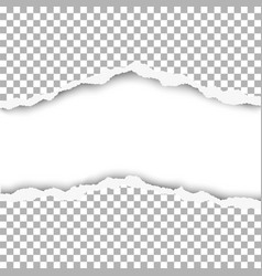 Snatched middle of paper with white background vector