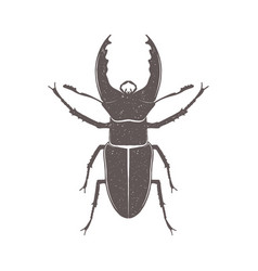 vintage brown deer beetle emblem grunge badge vector image