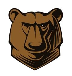 Big brown bear head vector image vector image