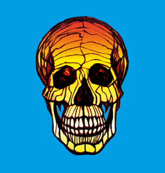 detailed hand-drawn of skull grunge vector image vector image